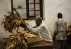 MALAWI-ELECTIONS-ECONOMY-TOBACCO